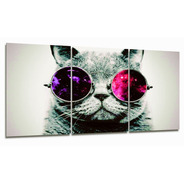 Cuadro Triptico Gato Con Anteojos 90x40cm