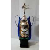Trofeo Copa Para Karate Artes Marciales