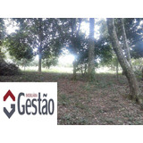 Chácara / Sítio Localizado(a) No Bairro Caju Em Nova Santa Rita / Nova Santa Rita - G2063