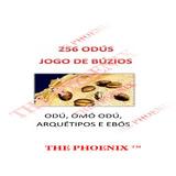 Jogo De Búzios 256 Odús Ebós Arquétipos Oráculo