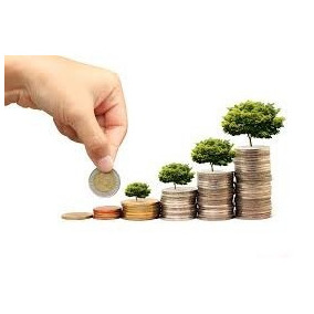 Manual Básico Para Captação De Investimento