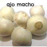 Ajo Macho (cebollin) 1 Kg