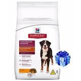 Hills Perros Adultos 16kg +regalo + Envio Gratis Eeuu