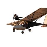 Construya Su Avion Ultraliviano Biplaza Dvd