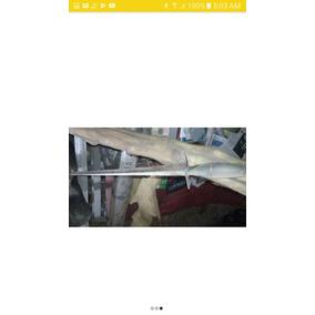 Bayoneta Antigua Bronce Y Cuerno De Toro. Intervención Fran