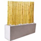 Kit Panel Cañas Bambu 1,5m Tacuara Maceta Fibrocemento 60 Cm