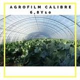 Venta De Agrofilm Calibre 6, 8 Y 10 Rollo: 6x50 Transparente