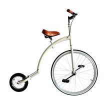 Bicicleta Robamiradas Diferentes Rodadas