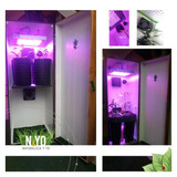 Armario Indoor Cultivo Leds Oculto - Listo Cultivar.