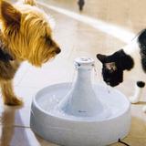 Fuente De Agua Para Perros Y Gatos Drinkwell 360 - 1 Galon