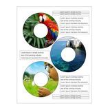Etiquetas Autoadesivas Para Cd/dvd Branca Fosca - 50 Folhas