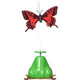 Zona De Mascotas Mosca Por Spinner Interactive Butterfly...