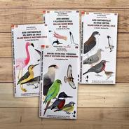 Pack 4 Guías, Aves De Chile