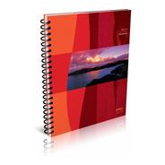 Cuadernos Universitario Cuadriculados Pack X10 America Nos
