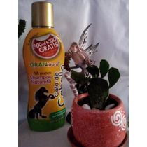 Shampoo Cola De Caballo 100 % Natural Crecimiento