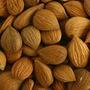 Apricot Kernel Semente Damasco 100g Rico Vitamina B17