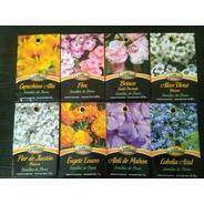 Semillas De Flores Flox 0,20g X Sobre La Germinadora