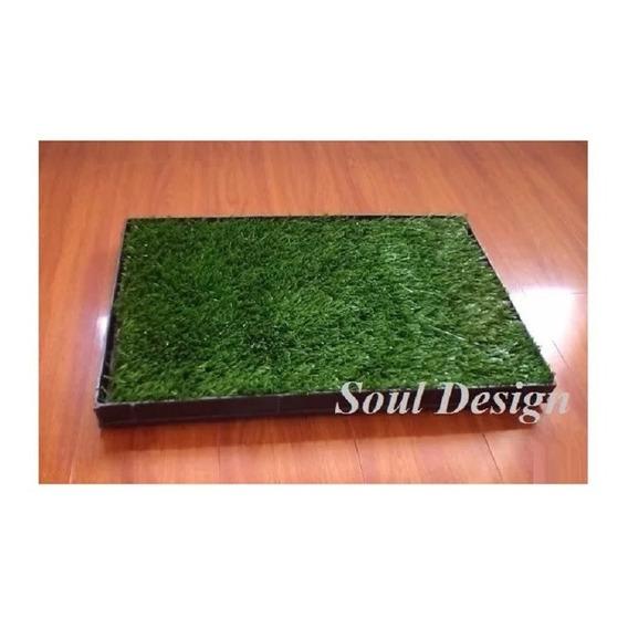 Repuesto Pasto Sintético Para Bandeja Sanitaria G 50x70 Soul