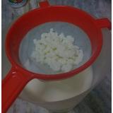 Nódulos D Kefir (leche), Probioticos, Ácido Láctico