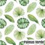 palma verde