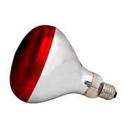 Lampada Infravermelho 250w 127v