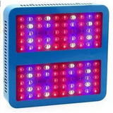 Panel Led 1000w Cultivo Indoor Agroescan + Envíogratis