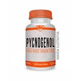 Picnogenol (pinus Pinaster) 150mg 120 Cápsulas - Pycnogenol