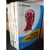 Anatomía Humana Descriptiva Y Topográfica, H. Rouviére (3 T)