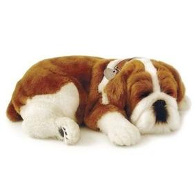 Buldog Perfect Petzzz Cachorro Pelúcia Que Respira