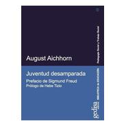 Juventud Desamparada, Aichhorn, Ed. Gedisa