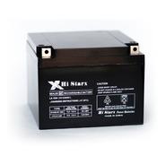 Bateria Gel Electrolito Absorbido 12v 24ah