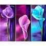 Cuadros Dipticos Tripticos Modernos Abstractos Florales