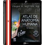 Netter - Atlas De Anatomía Humana 6ª Edición Pdf