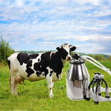 Tabla Vaca Lechera Milker 304 Stee Inoxidable Máquina De Or