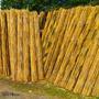 Cañas De Bambu Tacuara 50 Unid 15 A 25 Mm X 2.20 Mts Largo
