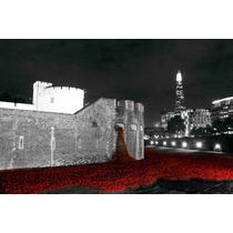 Poster Fotografía Arte Color Aislado Torre De Londres 50x75