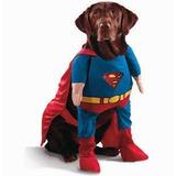 Patrones De Ropa Para Mascota Perro Gato