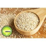 Quinoa Branca Em Grãos 1kg - Qualidade Premium - Green House
