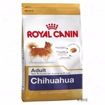 Alimento Royal Canin Chihuahua Envió Gratis