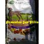 Balanceado Natural Meat Adulto X 15 Kg