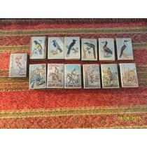 Lote De 13 Antiguas Cajas Fósforos Pájaros Imagens Gauchas