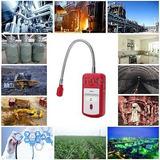 E3s5 Mano De Combustible Gas Escape Ubicación Detector...