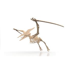 Rompecabezas 3d - Dinosaurio Pterodactilo - Dia Del Niño