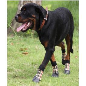 Cão Sapato Impermeável Tenis Meia Chuva Antiderrapante Tam 6