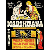 Propaganda Política De Medicamentos Abuso De La Marihuana W