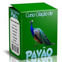 Curso Criação De Pavão - Aprenda A Criar Pavão E-book Manual