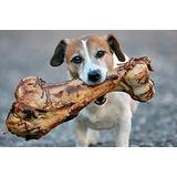 Femur Vacuno Ahumado Para Perros, 100% Natural Irresistible