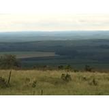Fazenda Frente Para O Asfalto - Região Avaré-sp - 65 Hectare