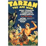 Coleção Completa Filmes Do Tarzan Com Johnny Weismuller -dvd