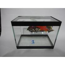 Aquario Terrario Para Tartaruga